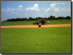 Harvester working on Top Turf sod farm
